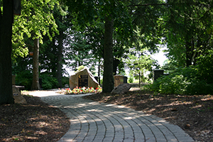 Forested area with brick path